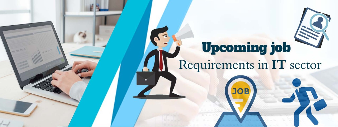 requirements in IT sector
